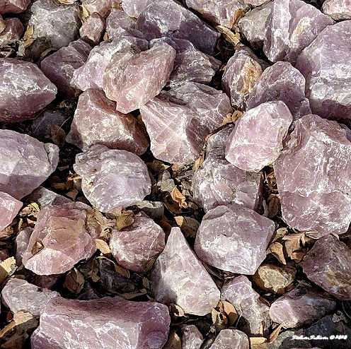 Rose quartz up close Madras Oregon 13 November 2018