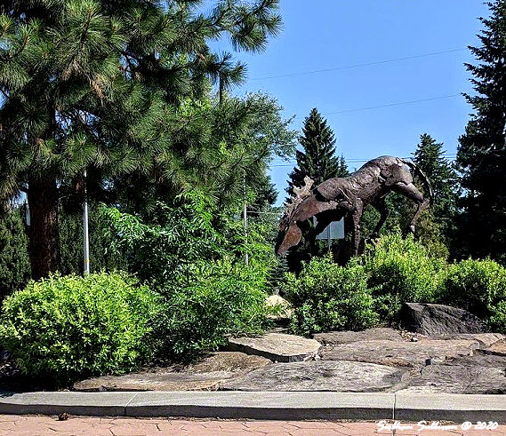 Outdoor art in Bend, Oregon July 2020