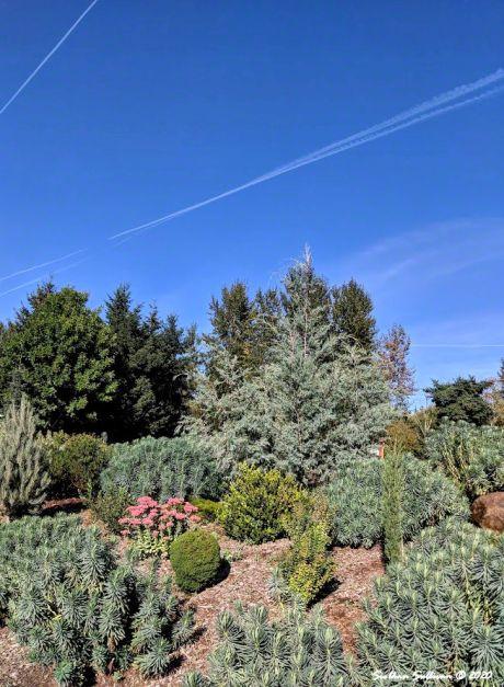 Landscaping in botanical garden in Silverton, Oregon September 2018