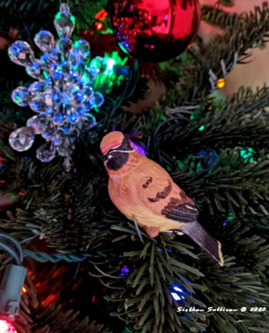 Cedar waxwing ornament December 2020