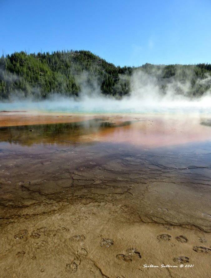 Steam-filled Yellowstone landscapes