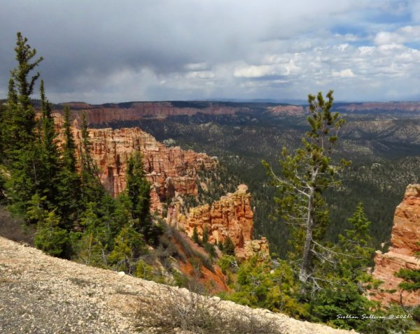 Hoodoos at Bryce
