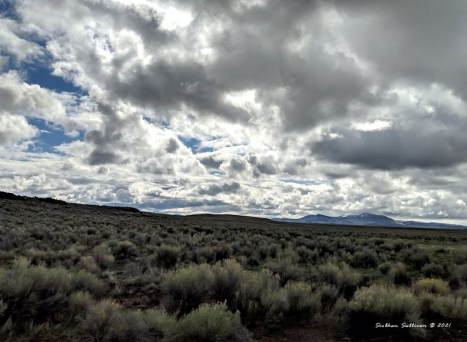 North of Steens Mountain