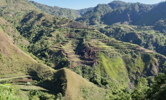 2. Blick in die Bergwelt Buschland