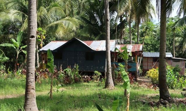 Philippinische Welblechhütte zwischen Palmen im grünen