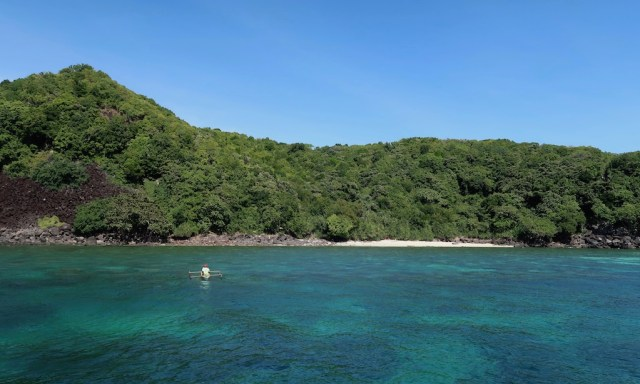 Der Rock West Beach von Apo Island