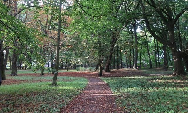 Park in Kolberg in der Nähe des Leuchtturms