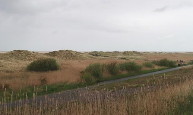 Die Dünenlandschaft in Ording