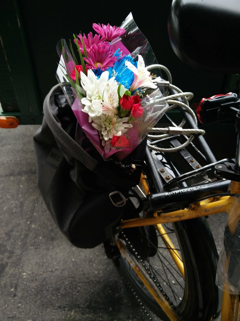 flowers from store, in a pannier on the back of my bicycle.
