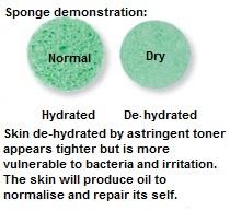Skin as a sponge