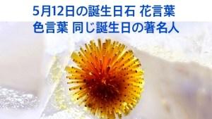 5月12日生まれのあなた。お誕生日おめでとうございます。誕生石はカコクセナイト燐灰石(りんかいせき)、意味と誕生花、プレゼントは?