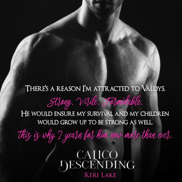 Calico Descending - Teaser 4