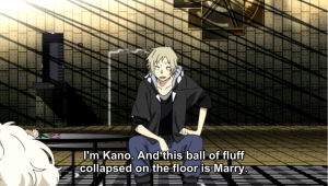 Watch it, Kano. That ball of fluff is an important plot point!