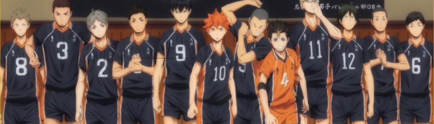Haikyuu! Karasuno Group Shot