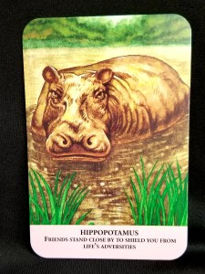 Hippopotamus Oracle Card of the Day:  Hippo partially submerged in water.