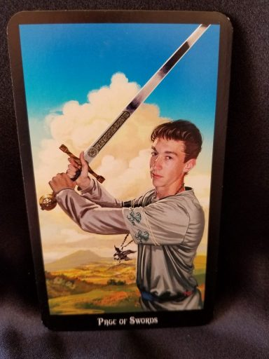 Page of Swords - Tarot Card: a Young man holding a sword at the ready.