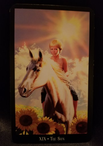 The Sun - A young blonde boy atop a white horse, sunflowers in the forefront