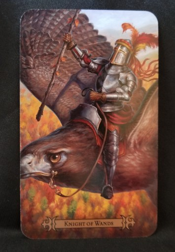 Knight of Wands Tarot Card - A knight dressed in armr holding a staff, riding an eagle
