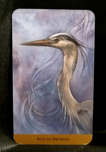 Ace of Swords - A Blue Heron against a background of swirling waters.