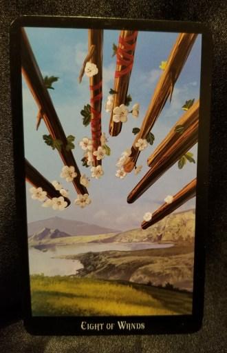 Eight of Wands - Tarot Card:  Eight flowered wands point towards a verdant expanse