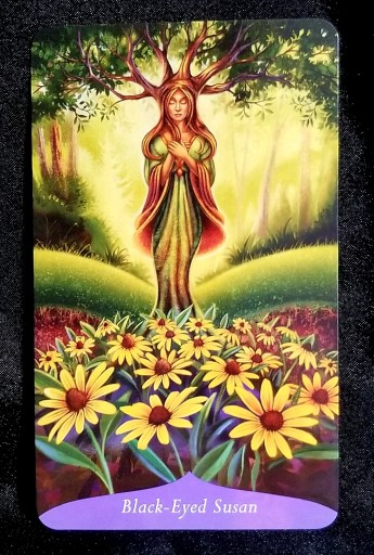 Black-Eyed Susan: A woman with tree branches springing from her head, black-eyed susans at her feet.