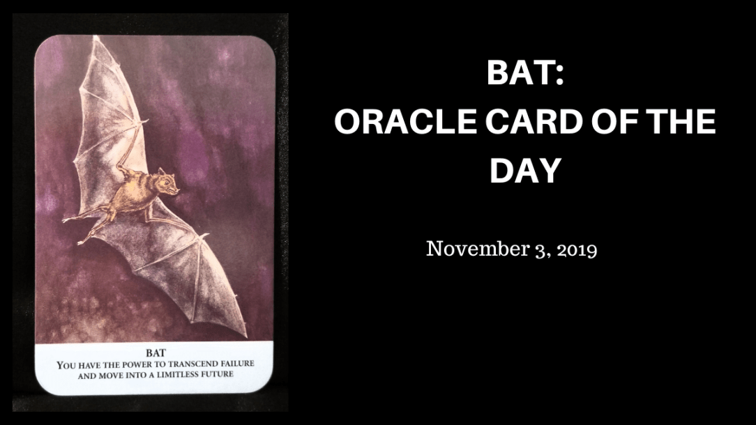 Bat - oracle Card: A grey bat in flight