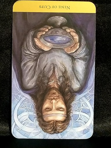 Nine of Cups-Reversed:  A man holding a silver chalice.  The card is turned upside down.