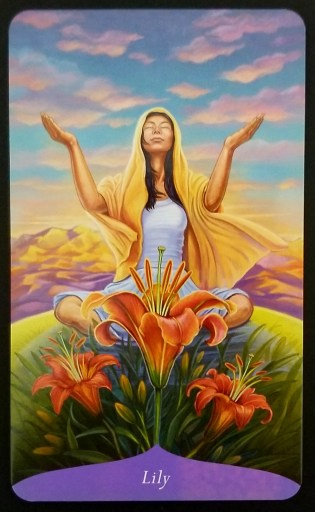 Lily - a woman sitting in a field with orange lillies in front of her.