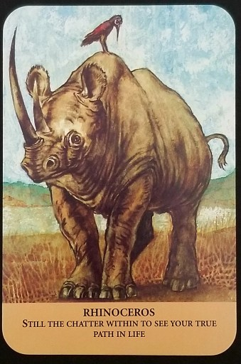 Rhinoceros - A large rhino stands on the plains.  A bird is perched on its back.