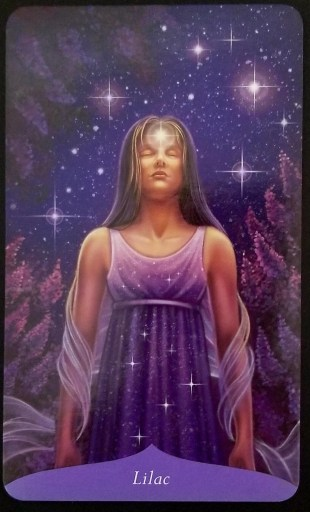 Lilac - A woman stands surrounded by lilacs.  Her third eye chakra is glowing.