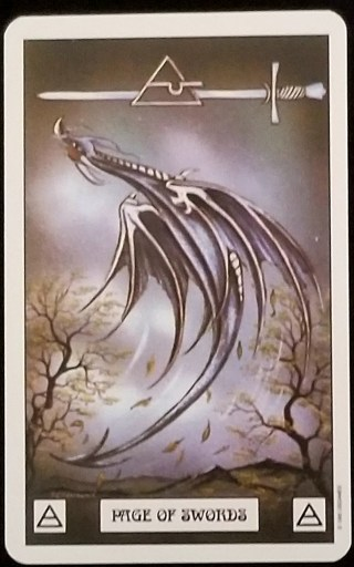 Weekly Tarot Reading - Page of Swords
