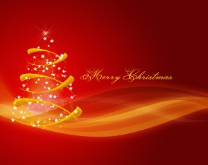 Have a Merry Xmas and a Happy New year