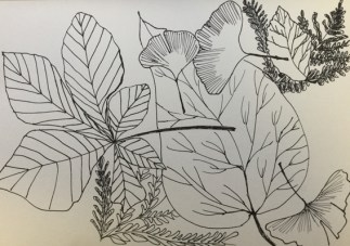 feuilles-2-benedicte