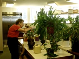 Sr. Rose in the Plant Room at Mother of God Monastery