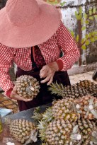 20 Lady Selling Taiwan's Abundant Pineapples (by Benedict Young)