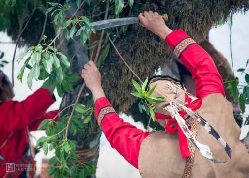 Mayasvi, cutting yono trees