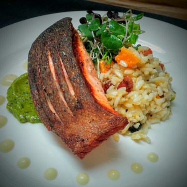 KING SALMON - pan roasted salmon served on top of butternut squash risotto, house cured pancetta, with pistachio pesto and local organic sprout mix