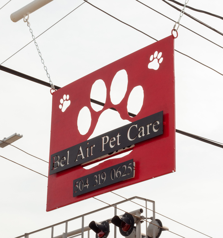 New orleans pets