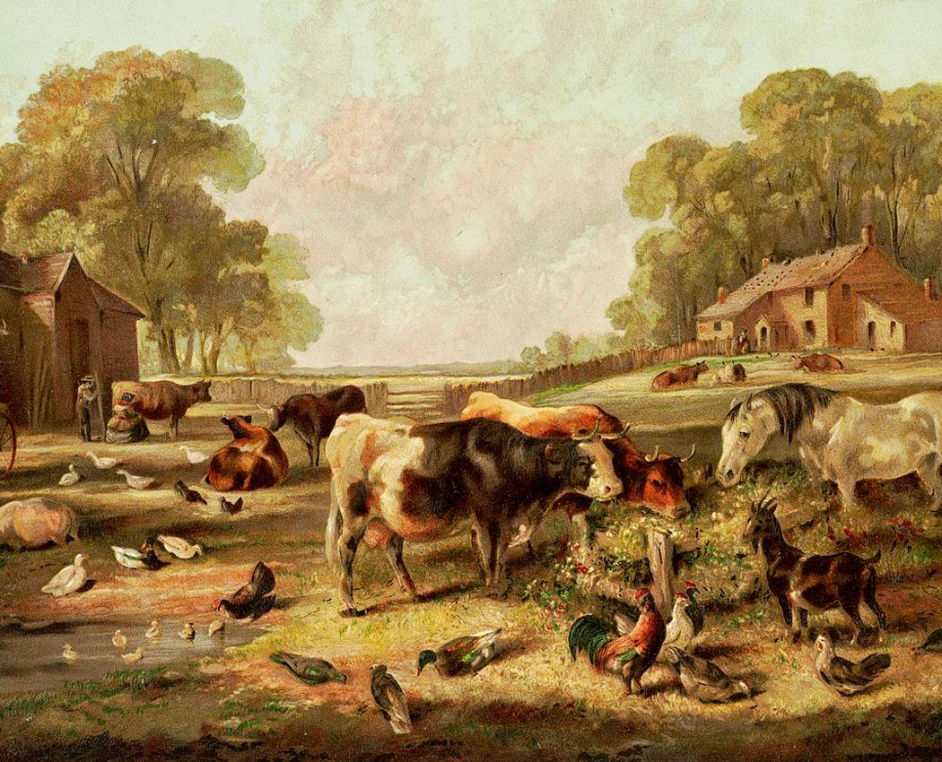 Episode 234 Richard Bushman Farms Amp Farm Families In