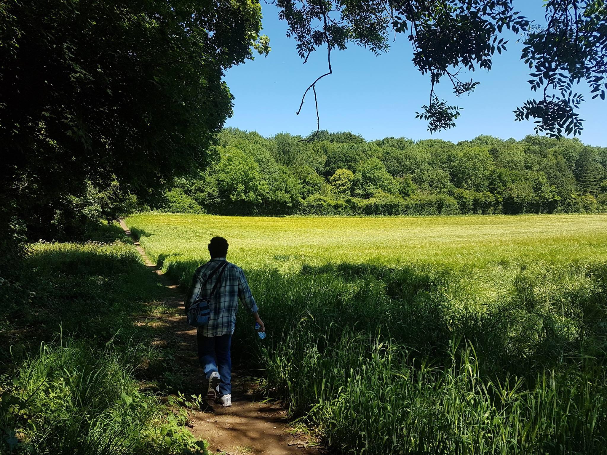 Sunday walk to Lavender Farm