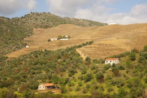 Towards Pocinho by train