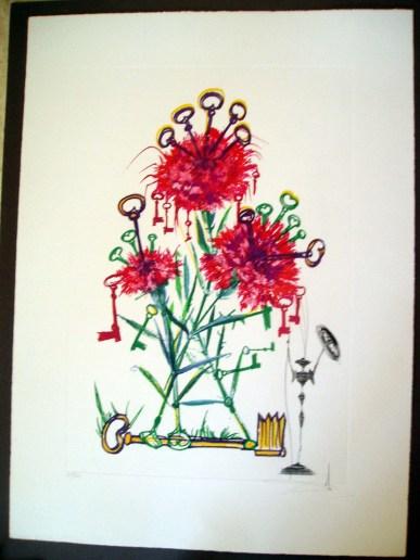 Dali Carnation