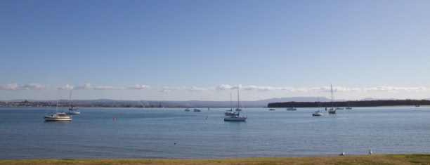 Boats at Tauranga
