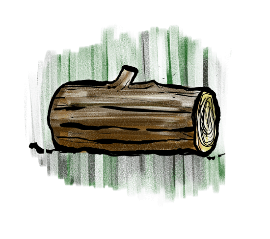 all kids love log