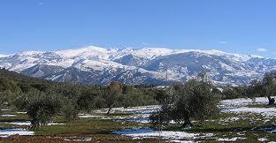 Unfeld die Sierra Nevada