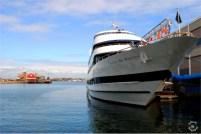 The Boston Harbor