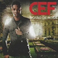 Botão de Rosa 'Album' de Cef