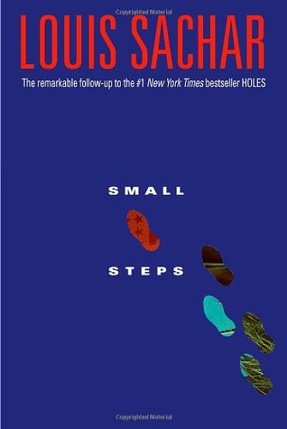 Book Review – Small Steps