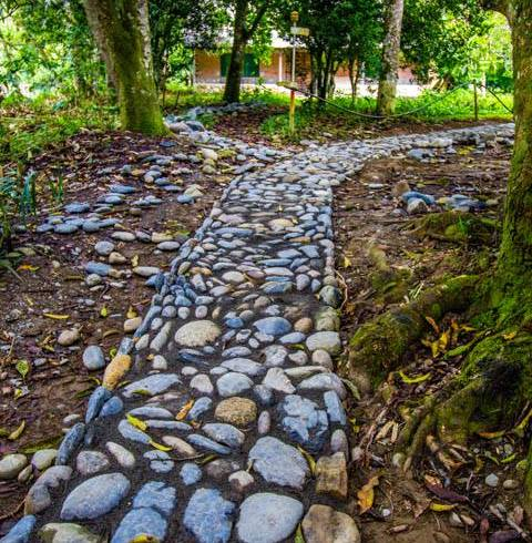 Narrow Cobblestone Path in Bolivia by a World Race Squad
