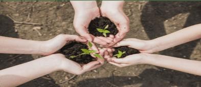3 pares de manos que sosteniendo cada uno un puñado de tierra, del que emerge una pequeña planta